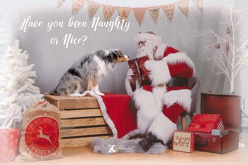 The Real Santa Pet photography
