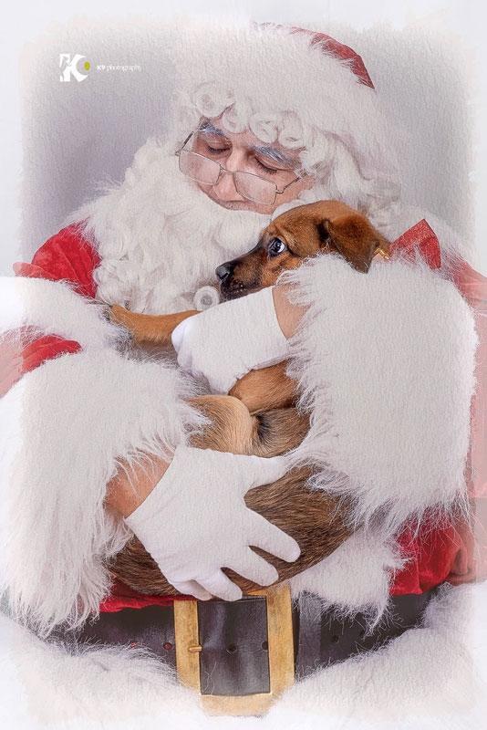 Dog hugs The Real Santa