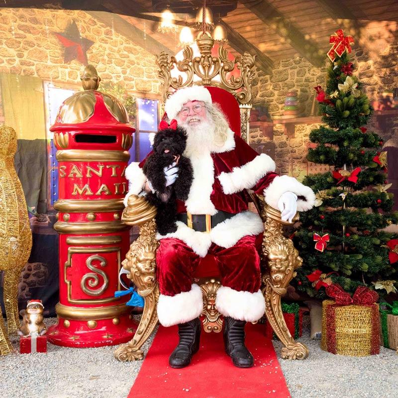 The Real Santa with dog