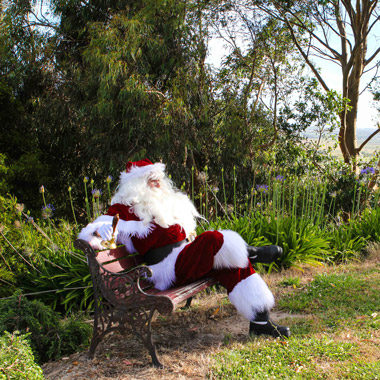 The Real Santa Geelong Garden party